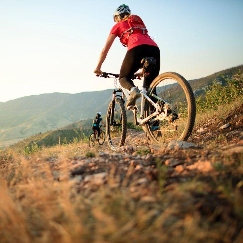 Grup De Biciclisti