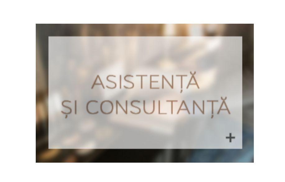Asistență şi consultanță