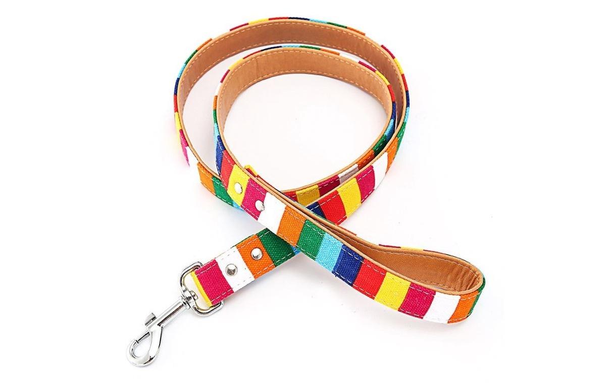 Colorful Striped Basic Dog Leash